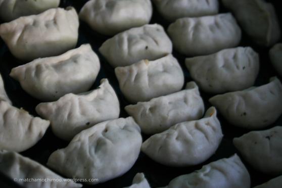 Fried Vegetarian Gyoza ( 餃子, dumpling )